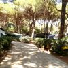 Camping Village Il Sole (GR) Toscana
